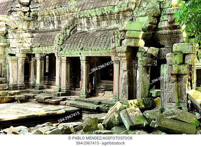 Ta Prohm temple, Angkor Wat area, Siem Reap, Cambodia