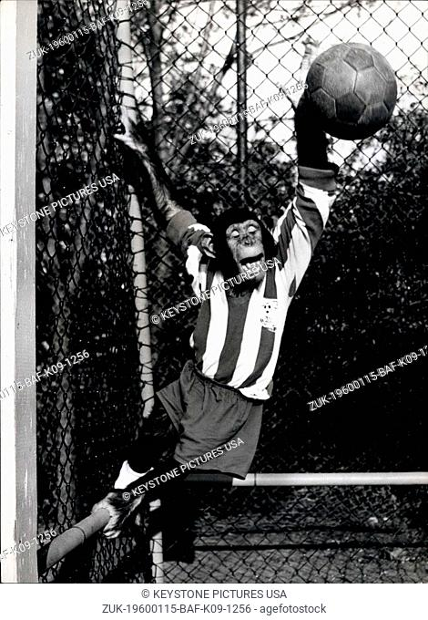 1967 - The World Cup May Be Over, But not for the Chimps: Monkey business carries on, football season or not. These two chimpanzees from the Munich Zoo in...