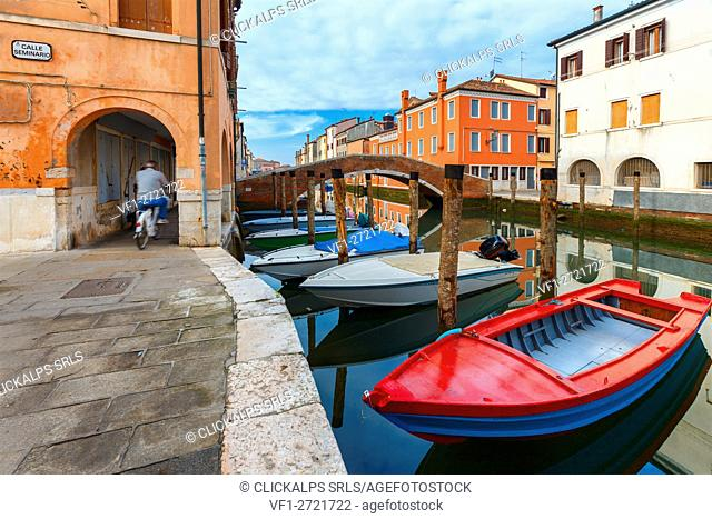 Europe, Italy, Veneto. Boats moored in a canal of Chioggia
