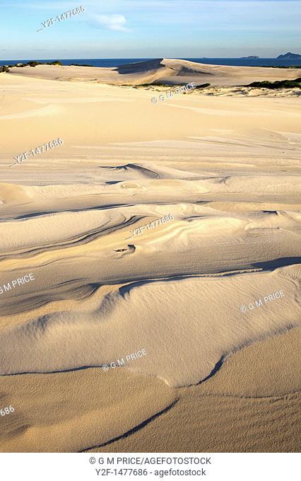 seaside dunes with wind and rain patterns, Australia