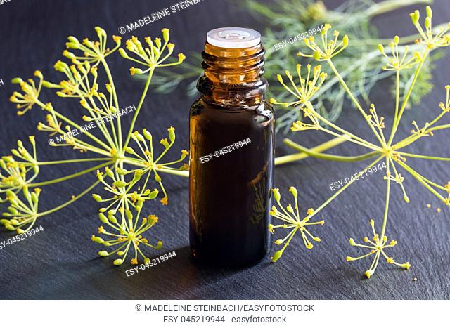 A dark bottle of dill seed oil with fresh dill in the background