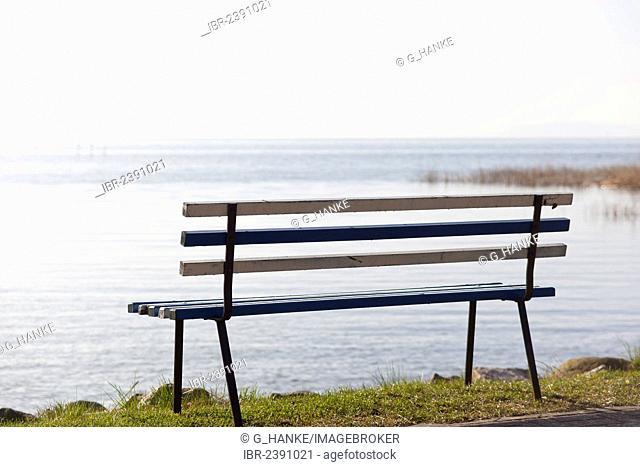 Bench at the harbour of Neeberg near Wolgast, morning mood, backwaters, Usedom Island, Mecklenburg-Western Pomerania, Germany, Europe