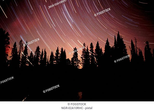 Woodlands and star trails