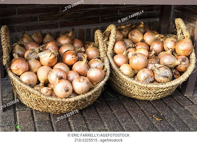 Fresh onions for sale. Amsterdam