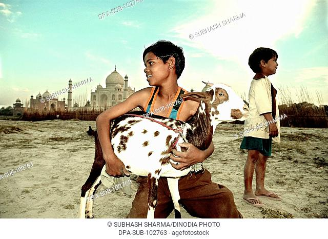 Children playing goat banks river Yamuna flowing Taj Mahal Agra Ancient artist artistic beautiful blue sky boys children kids clouds Color constructed 1631 A