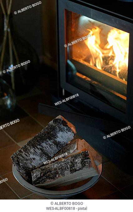 Firewood in front of fireplace