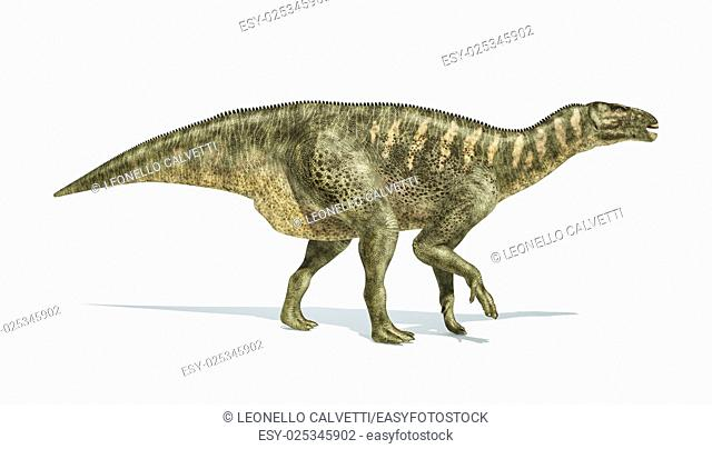 Iguanodon Dinosaur photorealistic and scientifically correct representation, side view. On white backgraound and drop shadow. Clipping path included