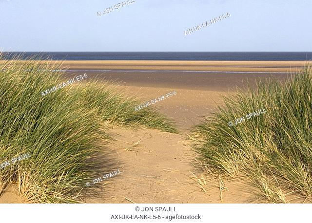 Grass and sand dunes on Holkham Beach
