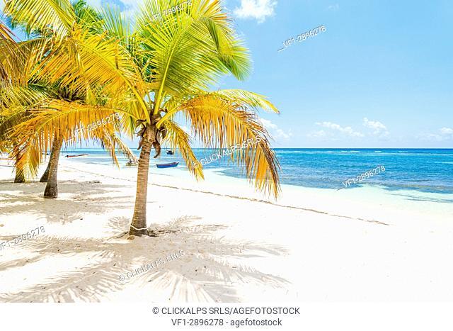 Mano Juan, Saona Island, East National Park (Parque Nacional del Este), Dominican Republic, Caribbean Sea