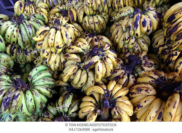 banana wholesale in Afghanistan