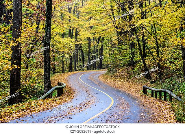 Rural autumn road, Mt. Greylock State Reservation, Massachusetts, USA