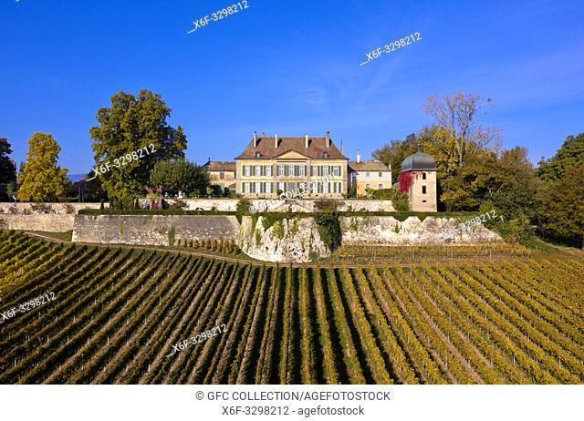 Chateau de Vullierens, Vullierens Castle, areial shot, Vullierens, Canton of Vaud, Switzerland