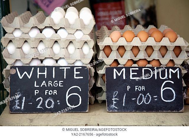 Egg Vendor on North End Rd Market in Fulham SW6 - London UK