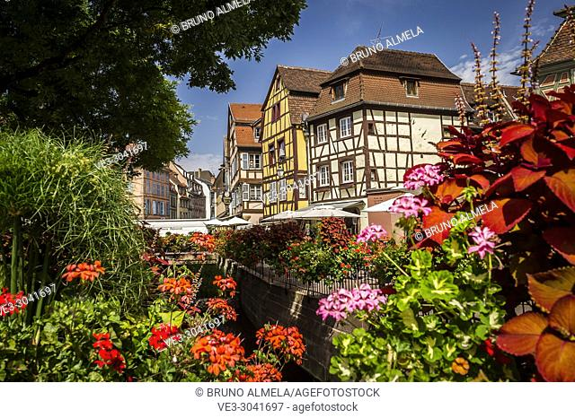 Ancienne Douane square in Colmar, Alsace (department of Haut-Rhin, region of Grand Est, France)