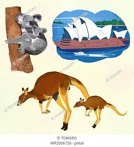 a set of scenes from Australia