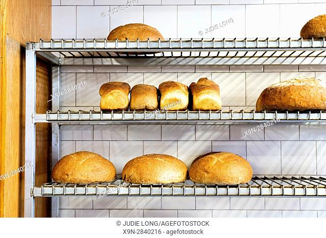 Artisan Freshly Baked Bread Displayed on a Metal Wired Shelving Unit, in an old time bread bakery