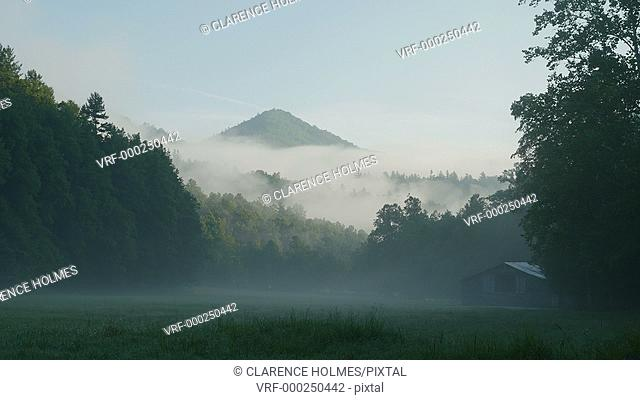 Early morning fog hangs over Cataloochee Valley in Great Smoky Mountains National Park
