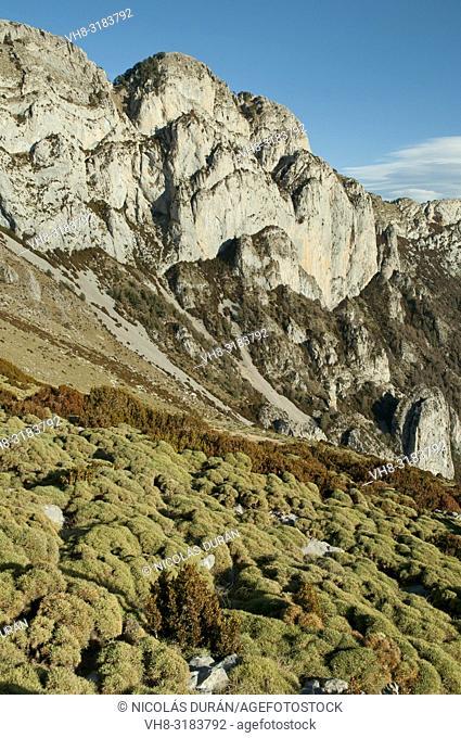 Peña montañesa, Huesca province, Aragon, Spain