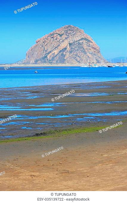 California, United States - Pacific coast view. Morro Bay State Park (San Luis Obispo county)