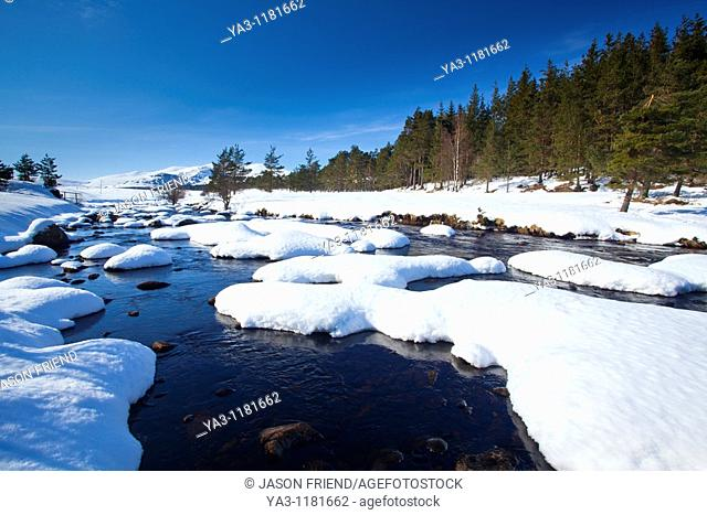 Scotland, Scottish Highlands, Cairngorms National Park  The snow covered River Muick running near a forest plantation in Glen Muick near Ballater