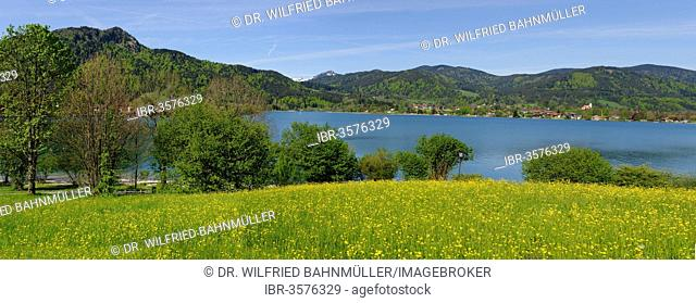 Bad Wiessee with Tegernsee Lake, from the Point Peninsula, Bad Wiessee, Upper Bavaria, Bavaria, Germany