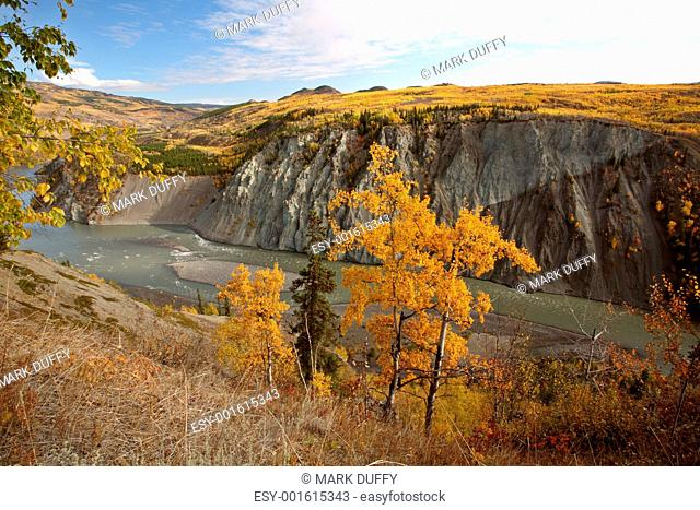 Autumn colors along Stikine River in Northern British Columbia
