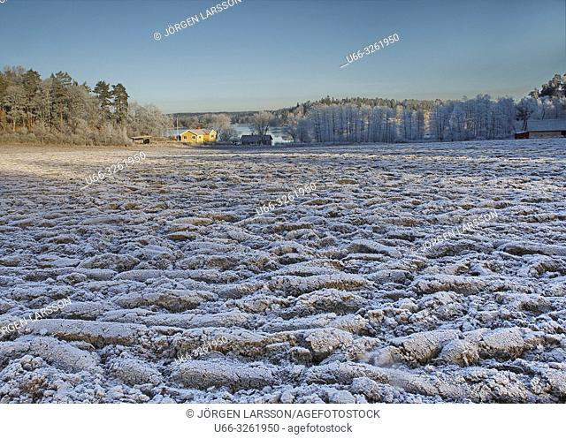 Winter landscape with frost. Botlyrka, Sodermanland, Sweden