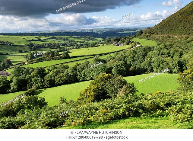 View of countryside with pastures, hedgerows and woodland in early autumn, on A483 near Newtown, Powys, Wales, September