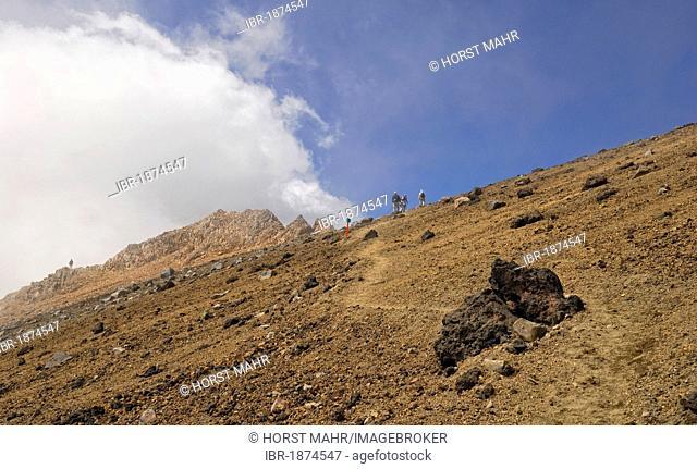 Hikers on Mount Ruapehu, Tongariro National Park, North Island, New Zealand