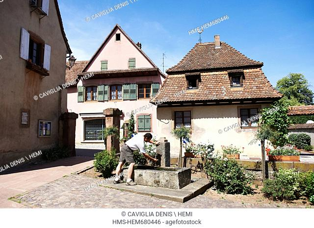 France, Bas Rhin, Mittelbergheim, labeled Les Plus Beaux Villages de France The Most Beautiful Villages of France, the typical renaissance houses