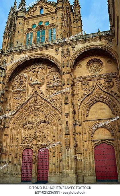 Cathedral Basilica in Salamanca of Spain by the via de la Plata way