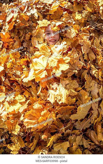 Smiling girl covered with autumn leaves