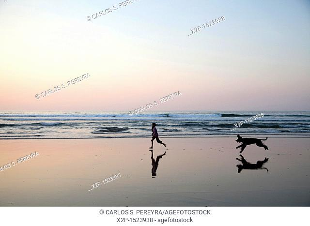 Girl and afghan dog playing in the beach of Deba, Guipuzcoa, Basque Country, Spain