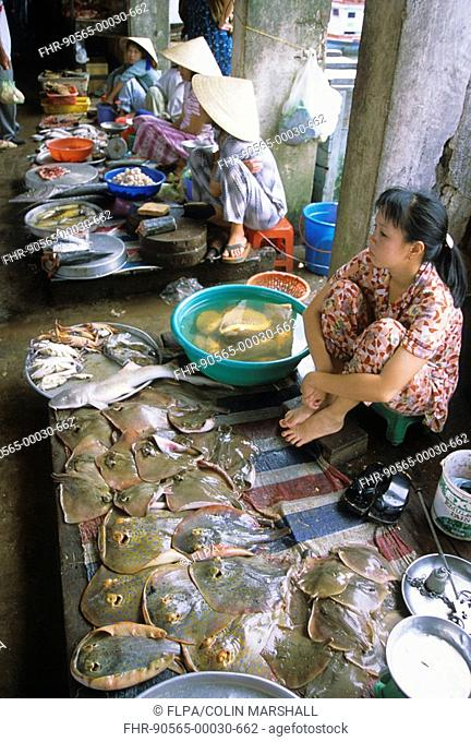 3ba2a14b4be Fish Market - Woman selling fish