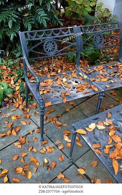 Metal bench and table covered in autumn leaves at the Frelinghuysen Arboretum, Morristown, New Jersey, NJ, USA