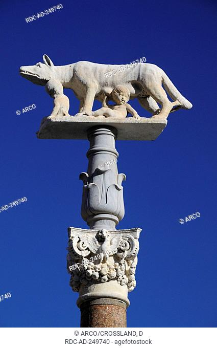 Statue of She-Wolf Siena Tuscany Italy Romulus and Remus