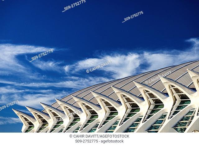 Architectural roof detail of the El Museu de les Ciencies Principe Felipe, part of the Ciutat de les Arts i les Ciencies complex designed by the Architect /...