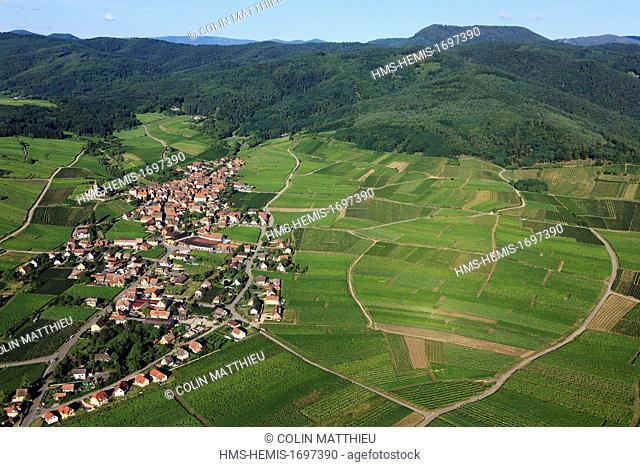 France, Haut Rhin, Alsace wine road, Hunawihr, labelled Les Plus Beaux Villages de France (The Most Beautiful Villages of France)