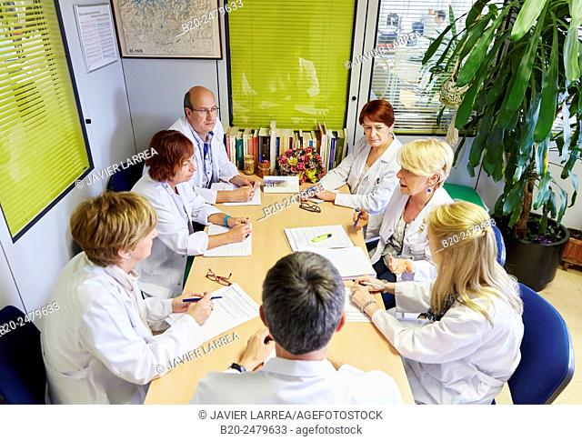 Meeting of health professionals, Human Resources Department, Hospital Donostia, San Sebastian, Gipuzkoa, Basque Country, Spain