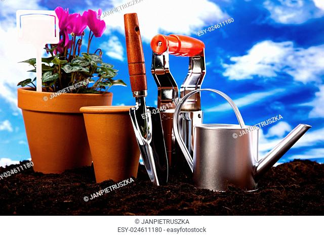 Assorted gardening, vivid bright springtime concept