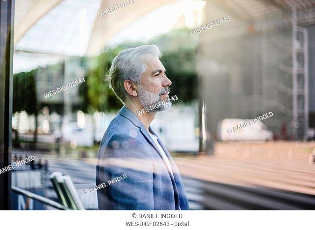 Portrait of grey-haired businessman outdoors
