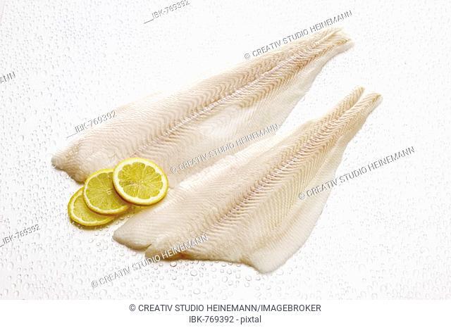 Atlantic Halibut filets, raw (Hippoglossus hippoglossus)