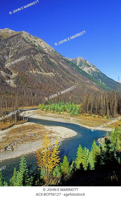 The Vermilion River Valley and the 2003 burn area, Kootenay National Park, British Columbia, Canada