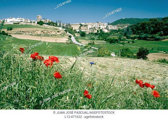 Valdeolivas, Alcarria. Cuenca province, Castilla-La Mancha, Spain