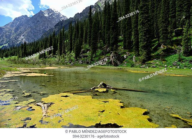 Pond in Karakol valley, Kyrgyzstan