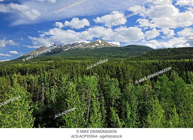Cassiar Mountains on the Stewart-Cassiar Highway near Good Hope Lake British Columbia Canada