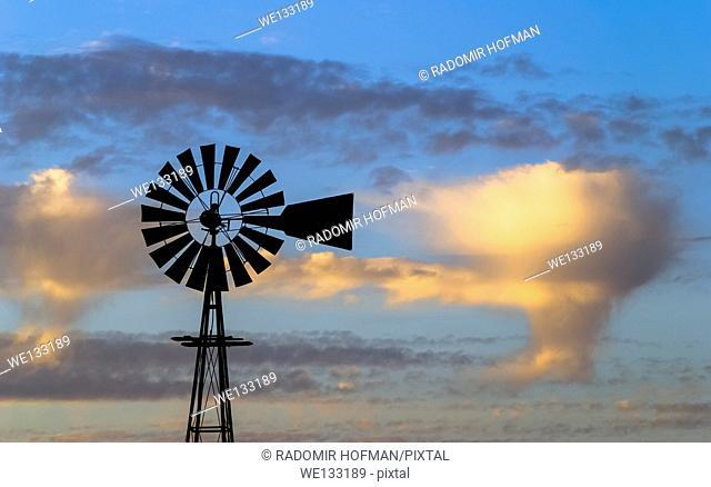 Windmill at dusk, Northern Calirornia