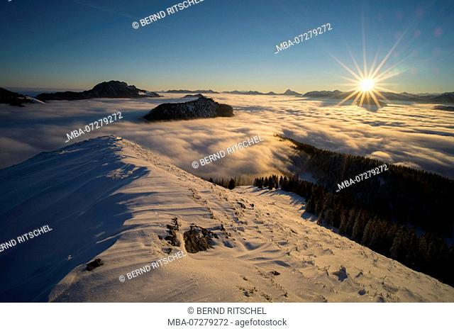 View at Jochberg above the clouds in winter, mountains on the Lake Walchen, Bavarian Alps, Upper Bavaria, Bavaria, Germany