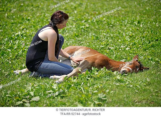 woman with foal
