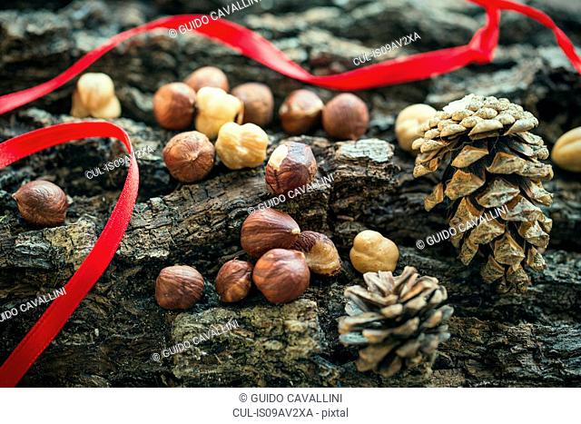 Cropped close up view of hazelnuts and pinecones with red ribbon on rough wooden surface